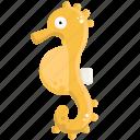 fish, horse, sea, seahorse