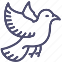 animal, bird, dove, fly, pigeon icon