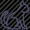 cat, kitty, pussycat, tomcat icon