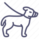 animal, dog, friend, leash, master, muzzle icon