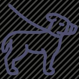 animal, dog, friend, leash, master, muzzle icon