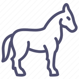 animal, equine, horse, mare, stallion icon
