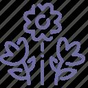 bouquet, flowers, nature, present icon