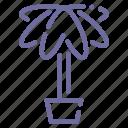 decoration, nature, palm, plant icon