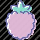 berry, dessert, food, raspberry