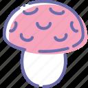 mushroom, amanita, poison, food