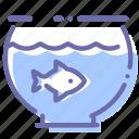 aquarium, fish, pet
