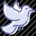bird, dove, fly, pigeon icon