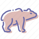 bear, brown, grizzly, white icon