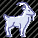 animal, goat, horns, mammal