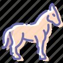 equine, horse, mare, stallion icon