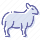 ewe, mutton, ram, sheep icon