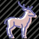 deer, elk, hoof, horns icon