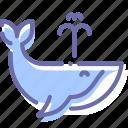 mammal, ocean, orca, whale