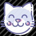 cat, kitten, kitty, pussy