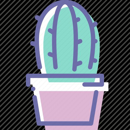 Cactus, decoration, plant, pot icon - Download on Iconfinder