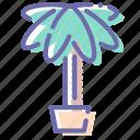 decoration, nature, palm, plant