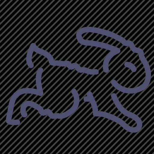 Animal, fast, rabbit, speed icon - Download on Iconfinder
