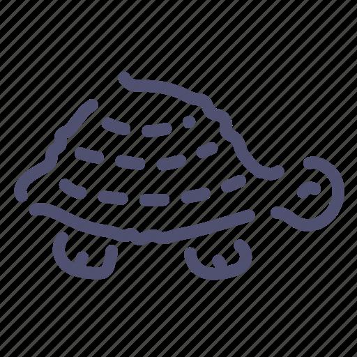 Animal, relax, slow, turtle icon