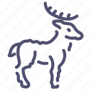 horns, elk, animal, deer icon