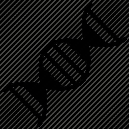 Dna, dna helix, dna model, dna structure, genetics icon - Download on Iconfinder