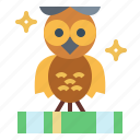 bird, hunter, owl, wisdom icon