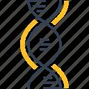 biology, dna, science, uneversity