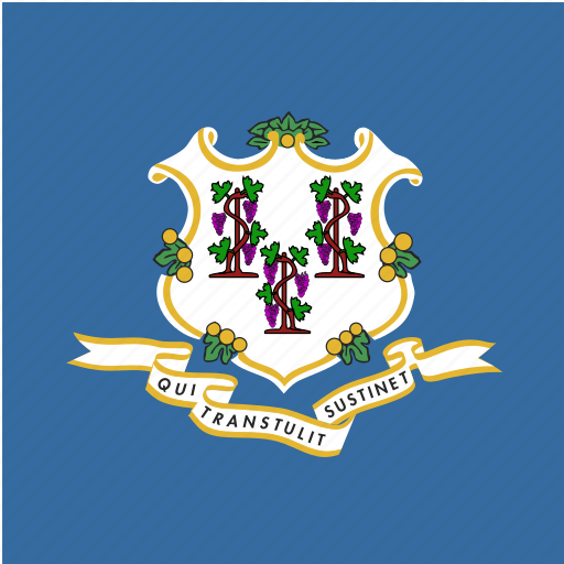 american, connecticut, flag, square, state icon