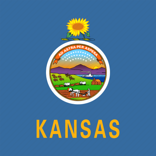 american, flag, kansas, square, state icon