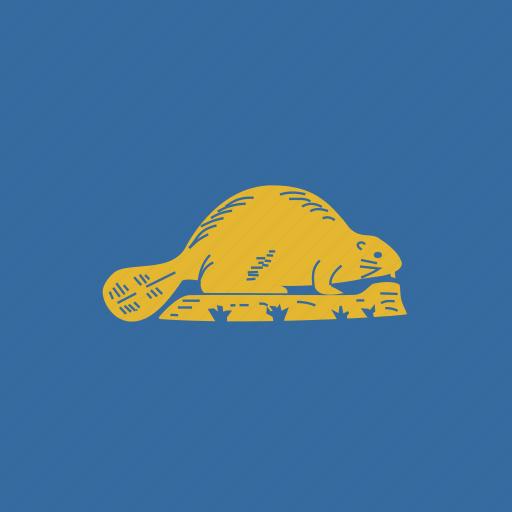 american, flag, oregon, reverse, square, state icon
