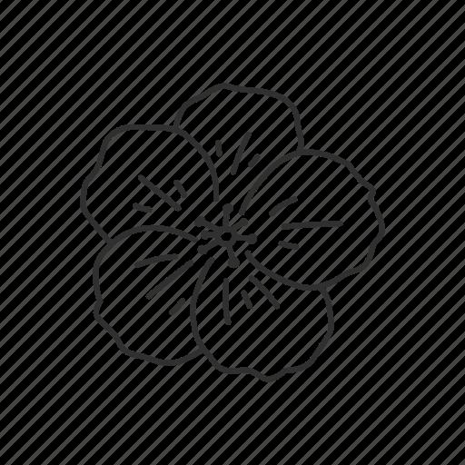 Flower, illinois, rhode island, state flower, usa, violet, wisconsin icon