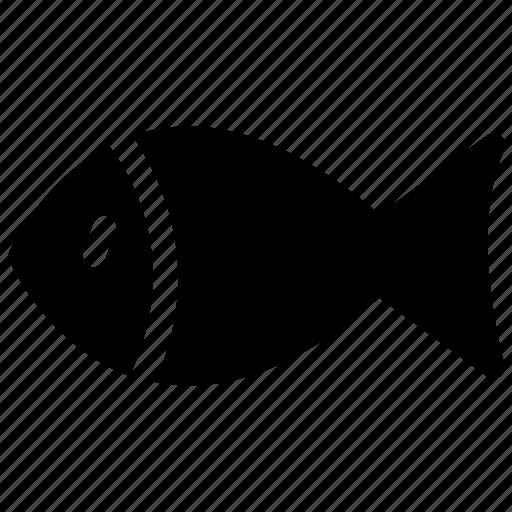 fish, fish food, fish meat, healthy food, sea food icon