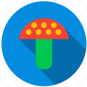 forest, fungus, plant, poison, soup, toadstool icon