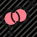 gender, lesbian
