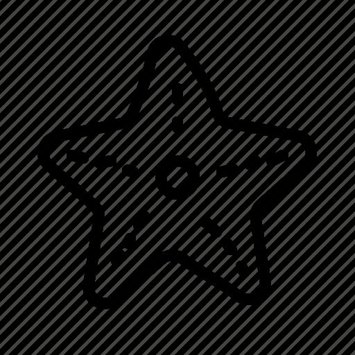 beach, fish, holiday, sea, star, starfish, summer icon
