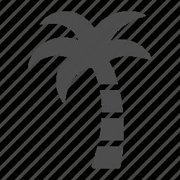 exotic, island, palm tree, tree, tropical, vacation icon