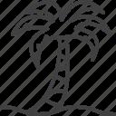 beach, palm, tree, tropical