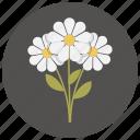 bouquet, flower, flowers, romantic, valentine icon