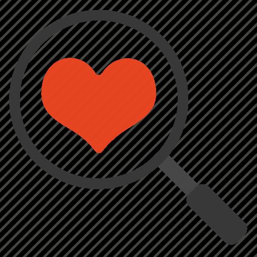 care, heart, love, search, valentine icon