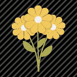 bouquet, flowers, gift, love, plant, valentine, valentines icon
