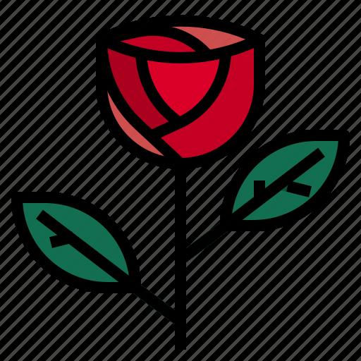 Gift, love, rose icon - Download on Iconfinder on Iconfinder
