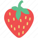 berry, diet, food, fresh, fruit, healthy diet, strawberry icon