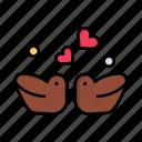 birds, couple, day, ducks, love, valentine, valentines