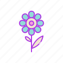 apreciation, flower, gift, leaf, nature, valentine icon