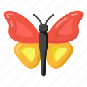 moth, butterfly, bird, insect, specie icon