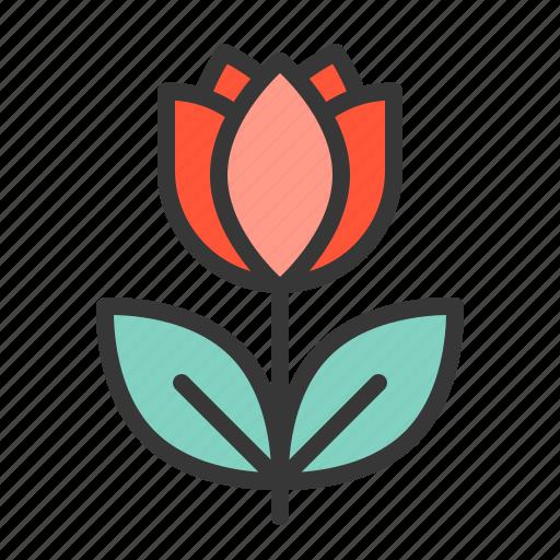 floral, flower, rose, valentine icon