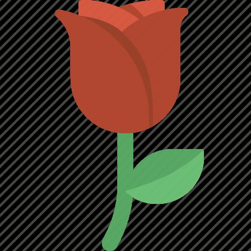 Floral, flower, love, romantic, rose, valentine, valentines icon - Download on Iconfinder