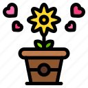 flowers, pot, heart, love, and, romance