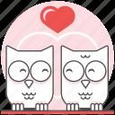 bird, birds fall in love, love, owl, sweet, valentine, valentine's day icon