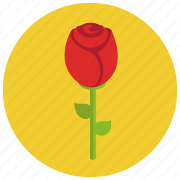 love, rose, valentine's day icon